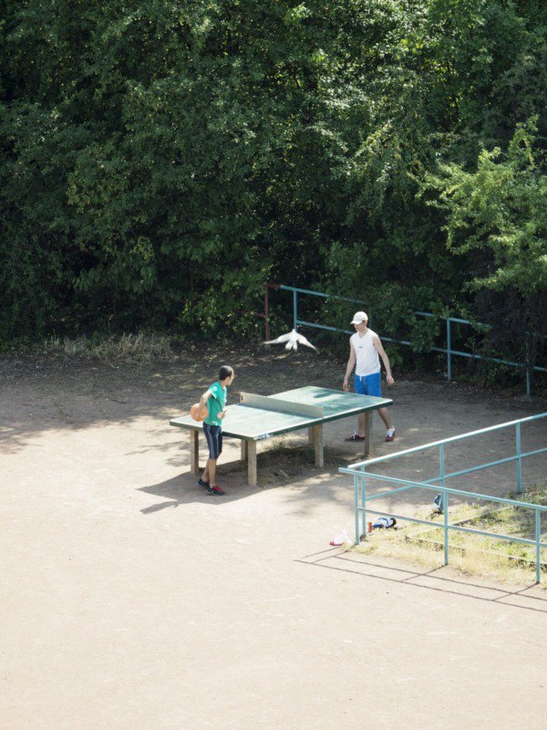1 - Photographer Spies On A Public Ping-Pong Table For 5 Years