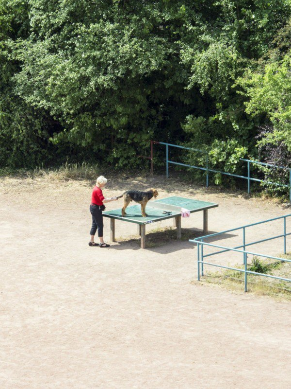 2 - Photographer Spies On A Public Ping-Pong Table For 5 Years